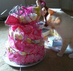 Mr. Pumpkin and Gracie's Diaper Cake Adventures