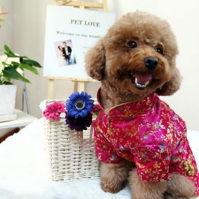 Shame on Mama – She Forgot My Outfit for the Vietnamese New Year!