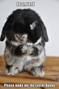 """Bunny Funnies – """"Lord, Please Make Me the Easter Bunny"""""""